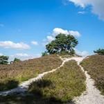 Brunssummerheide, wandelroutes van 2,5 - 8 km