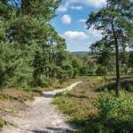 Fietsroute natuur en kastelen in Zuid-Limburg