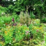 Botanische Tuin Jochumhof