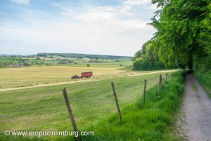 Geuldal heuvellland-9
