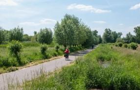 schinveldse bossen fietsen (2 van 2)