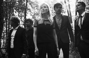 The Common Linnets - (c) Paul Bellaart