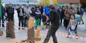 houtcarving-demonstratie-houtsculptuur-kettingzaag-2