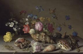 Balthasar von der Ast_ Blumen in einem Schneckenhaus, Insekten und Konchylien-original