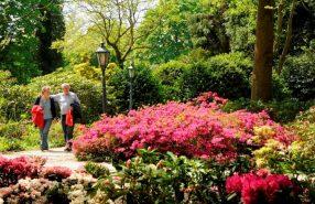 Rododendrontuin Kasteeltuinen Arcen
