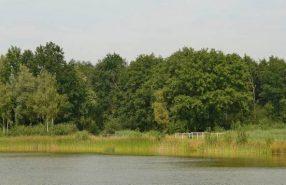 weerterbos_waterbuffer_hli_4514