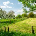 De 4 leukste dagtrips met overnachting in Limburg