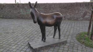 Maastricht d'n ezell