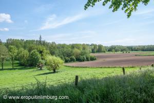 Rimburg wormdal-3
