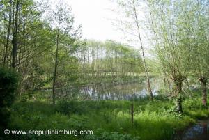 Strijthagerbeekdal-12